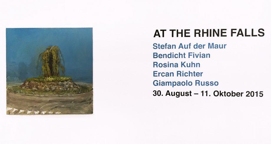 At The Rhine Falls